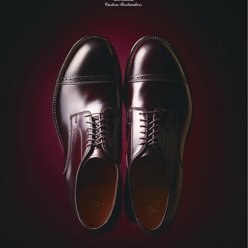 ALDEN 56201 #8 GENUINE SHELL CORDOVAN